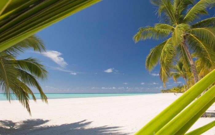 Пуэрто_Плата_beach-2-228532_700x440 (700x440, 38Kb)