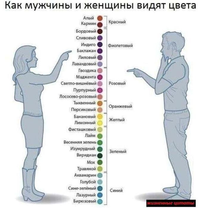 4387736_ (681x700, 52Kb)