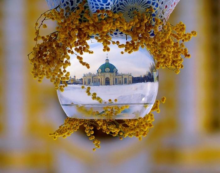 80029282_Perevernutuye_natyurmortuy_fotografii_ot_Marii_Elizavetuy_8 (700x551, 105Kb)