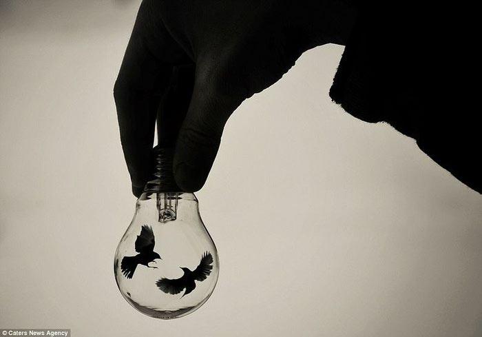 жизнь в лампочках Адриан Лимани фото 5 (700x489, 23Kb)