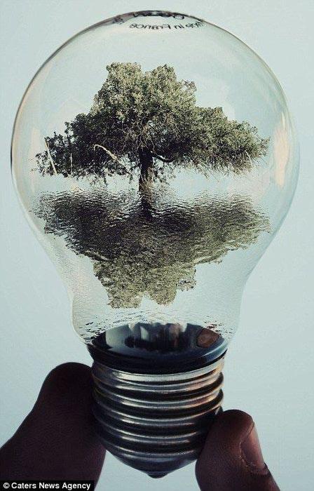 жизнь в лампочках Адриан Лимани фото 7 (448x700, 67Kb)