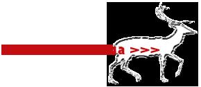 opisaneioleni999 (290x125, 18Kb)