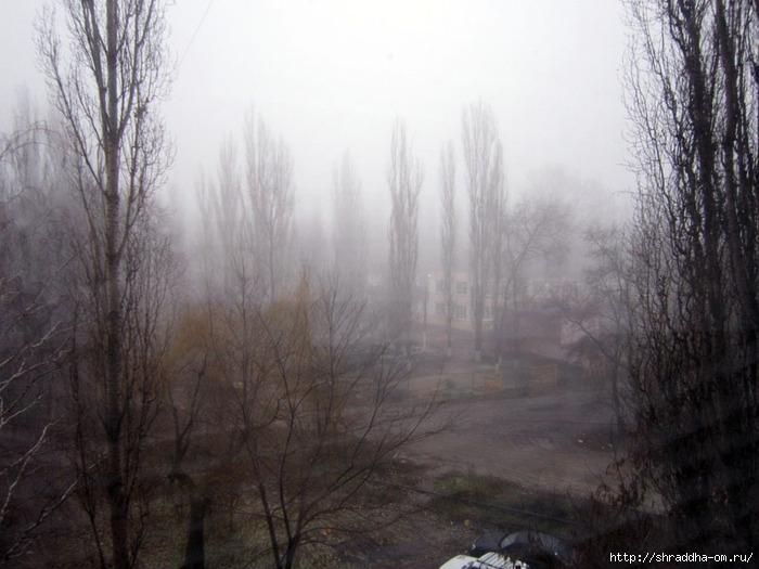 туман (700x525, 207Kb)