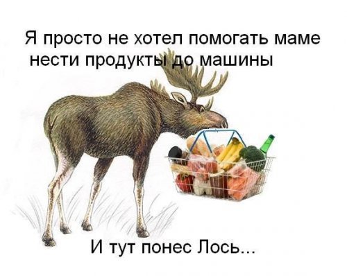 1350497242_poneslosi-5 (500x398, 35Kb)