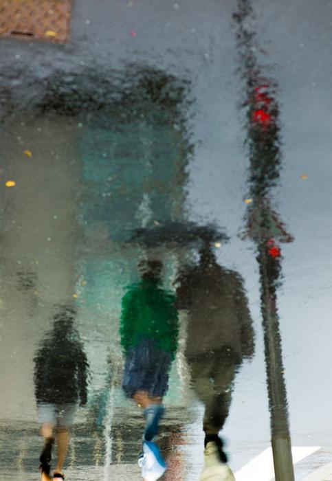 rain7 (483x700, 68Kb)