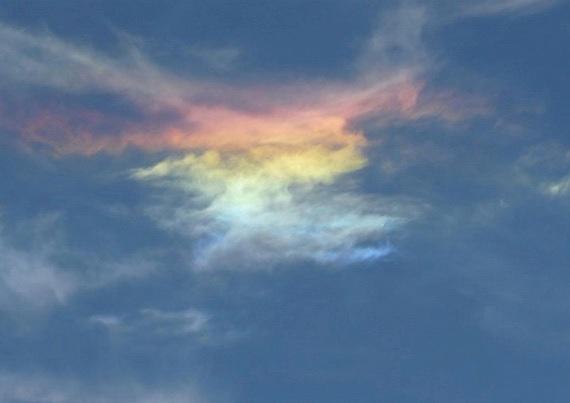 rainbow7 (570x403, 39Kb)