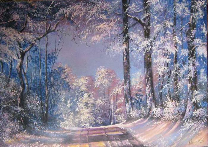3554158_ap_winter_road_1_ (700x496, 86Kb)