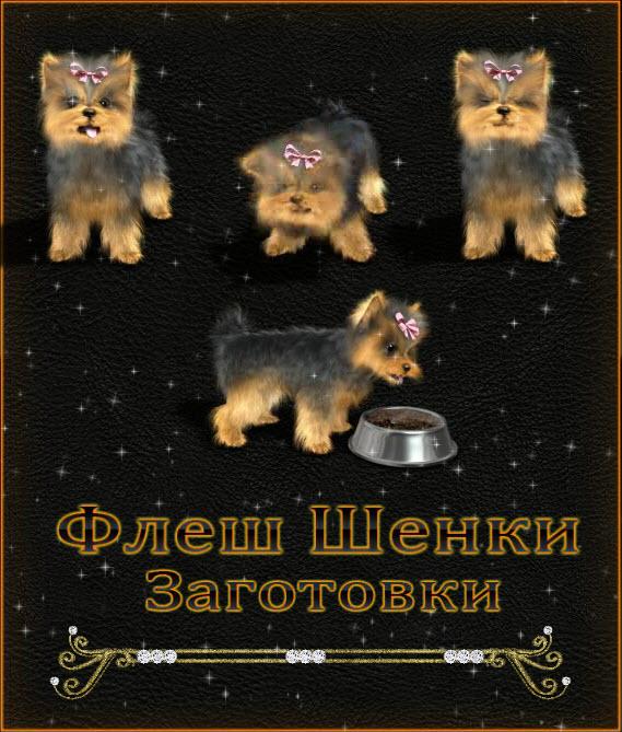 Флеш щенки для флеш открыток от frezija natali обсуждение на
