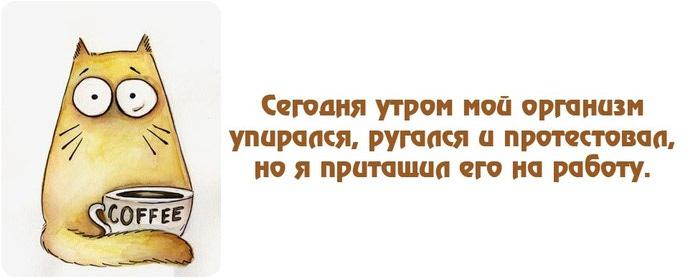 FN__OpgOhaU (700x279, 33Kb)