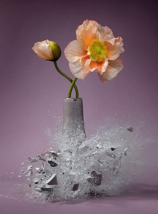 Exploding-vases-4-600x814 (515x700, 62Kb)
