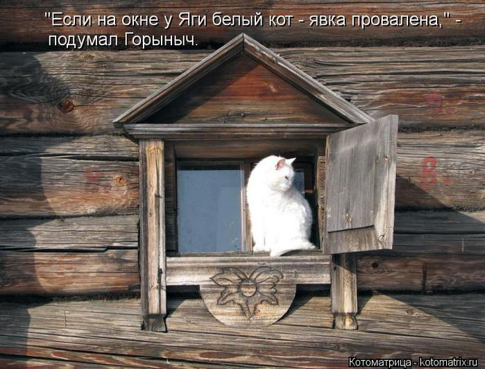 kotomatritsa_Jn (700x532, 76Kb)