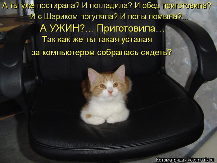 kotomatritsa_Kv (700x524, 51Kb)