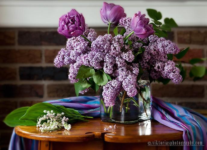Сирень-тюльпаны -Красота!!! (687x500, 113Kb)