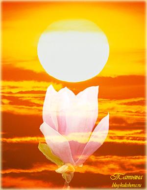 Blazing-Sun-1600x1200-ID-41250 (300x386, 67Kb)