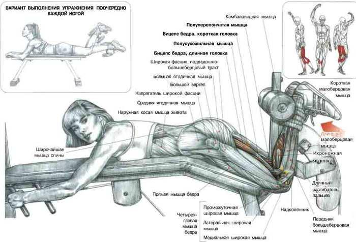 Как качать мышцы влагалища