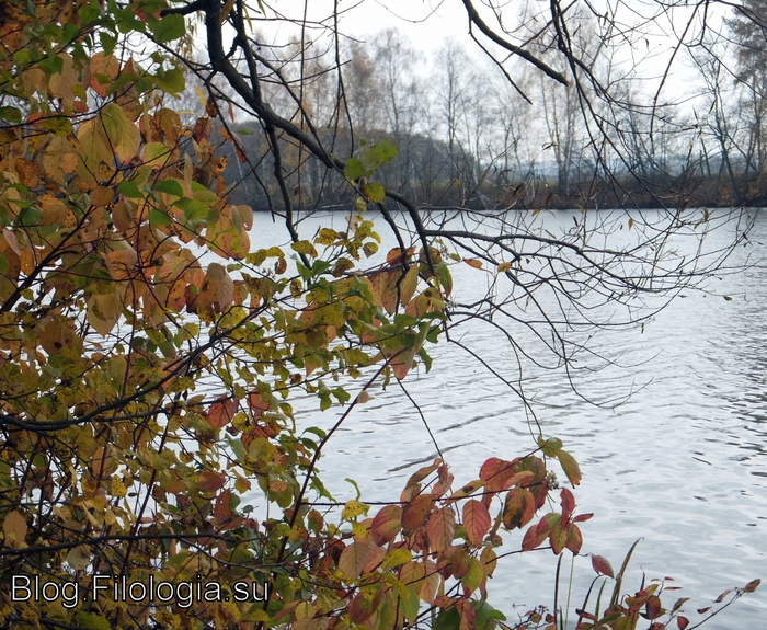 Осень в Архангельском/3241858_autumn2012i (700x575, 422Kb)