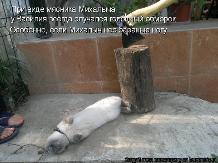 1254475239_hiop.ru_1254394033_367316 (650x524, 60Kb)