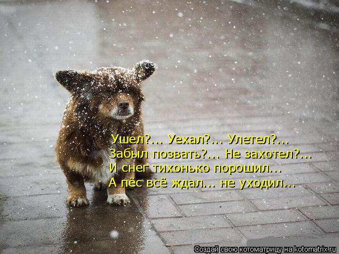 1254475239_hiop.ru_1254394040_365363 (650x524, 68Kb)