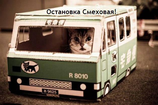 5016628_Otanovka (629x418, 46Kb)