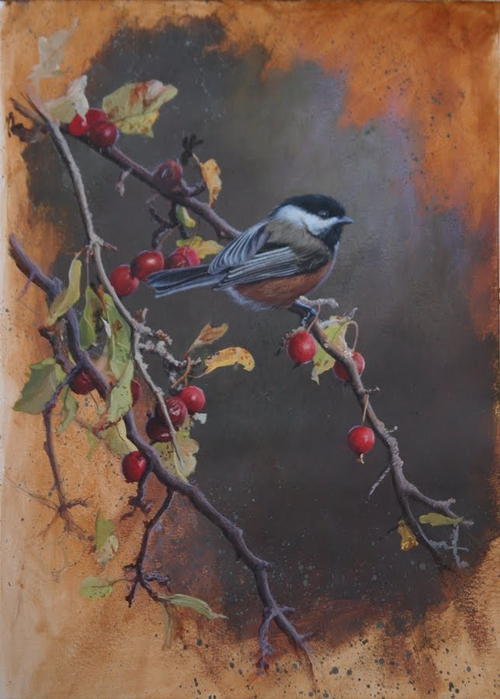 Chickadee Study Blog (500x700, 234Kb)