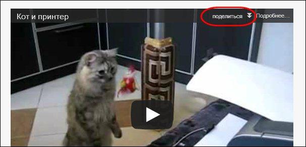 Ссылка поделиться в правом верхнем углу видео плеера YouTube