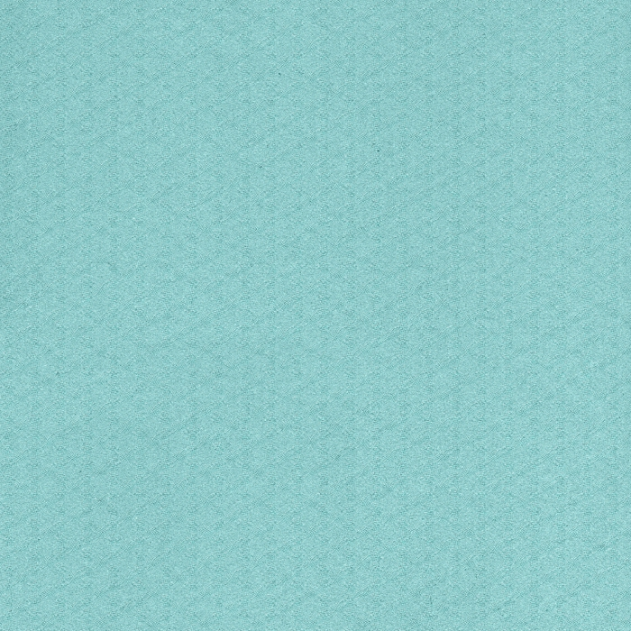 ericazwart-25daysofxmas-paper3 (700x700, 419Kb)