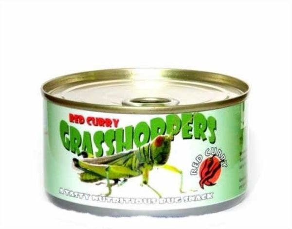 canned_foods_28 (600x471, 26Kb)