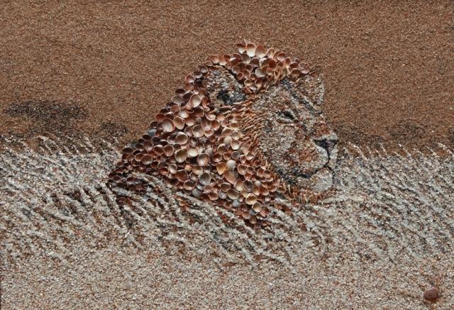 картины из песка и ракушек светлана иванченко 9 (640x437, 365Kb)