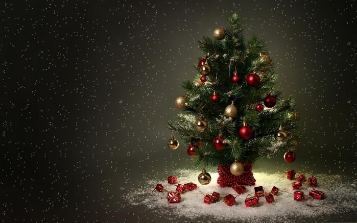 елка новый год/4171694_novogodnyaya_elka_foto (700x437, 209Kb)