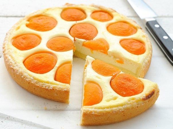 Творожный пирог с абрикосами (604x451, 58Kb)
