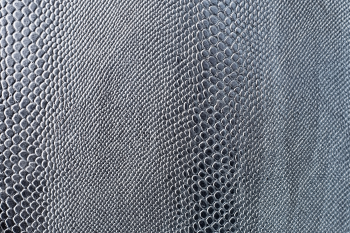 Reptile skin textures (3) (700x466, 548Kb)