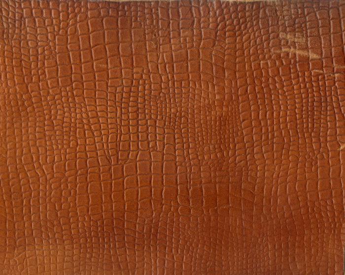 Reptile skin textures (30) (700x558, 562Kb)