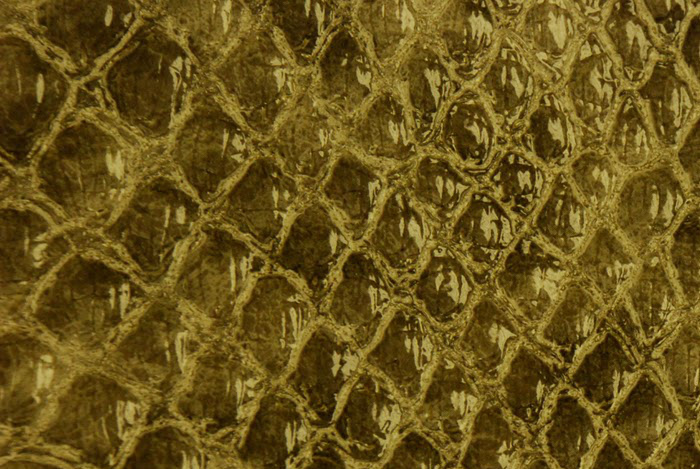 Reptile skin textures (32) (700x469, 130Kb)