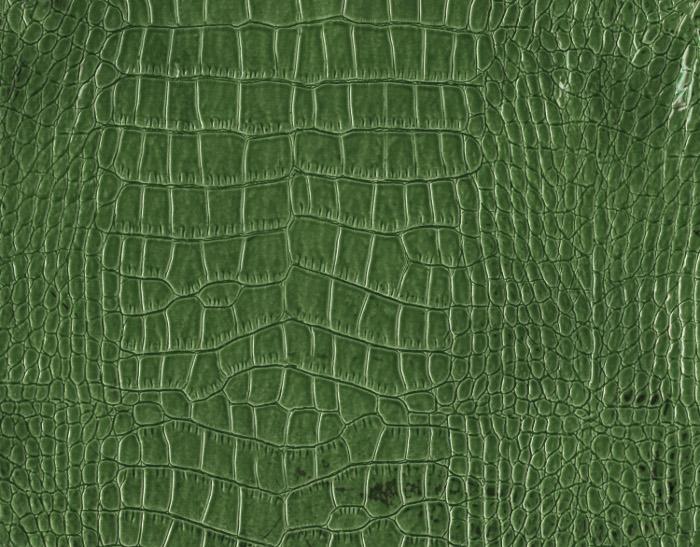 Reptile skin textures (45) (700x547, 176Kb)