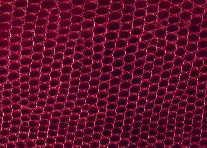 Reptile skin textures (47) (700x500, 492Kb)