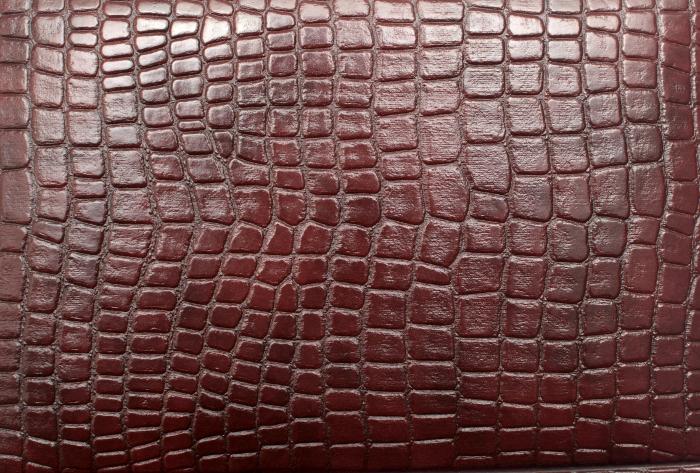 Reptile skin textures (51) (700x473, 426Kb)