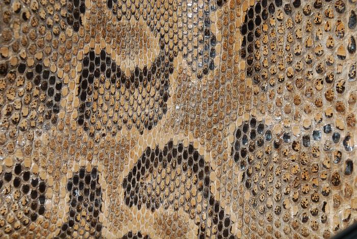 Reptile skin textures (61) (700x469, 369Kb)