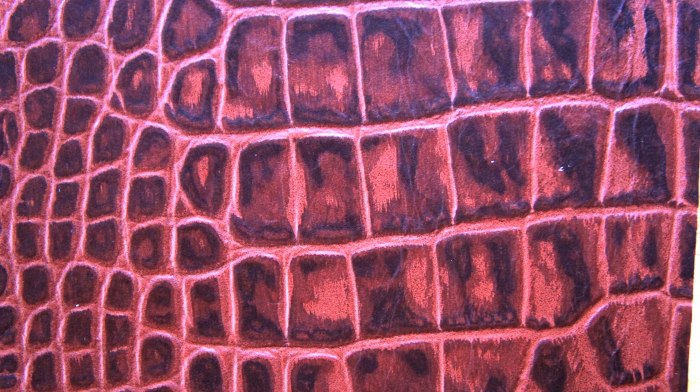 Reptile skin textures (69) (700x392, 476Kb)