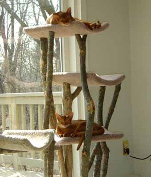 Домик для кошек своими руками с фото