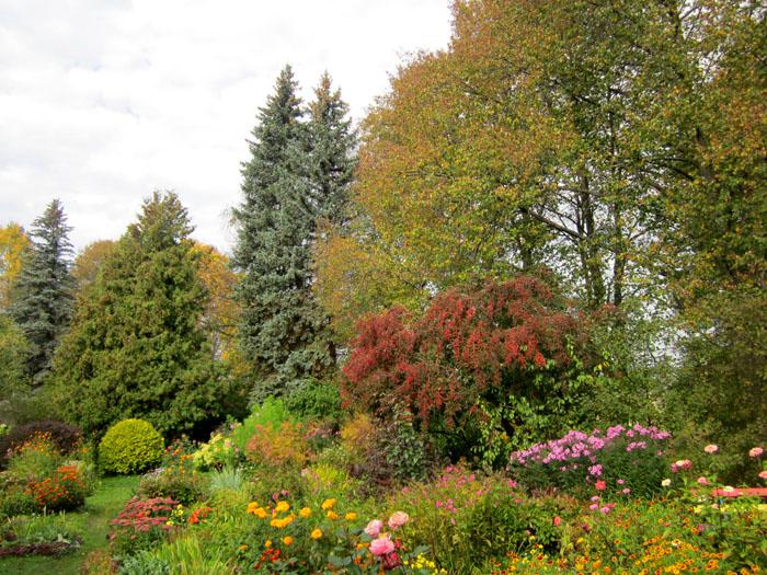 Сад Паустовского 1 (700x525, 211Kb)