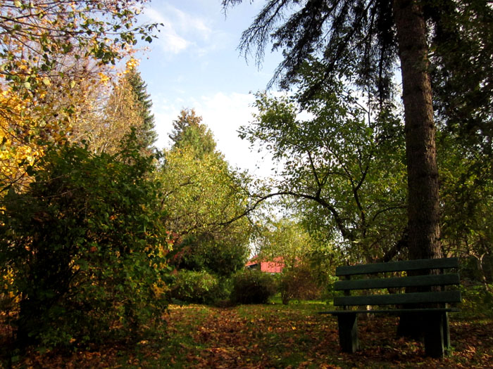 Сад Паустовского 5 (700x525, 197Kb)