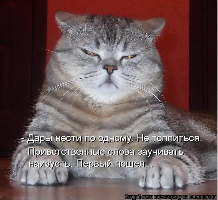 kotomatritsa_eK (700x640, 64Kb)