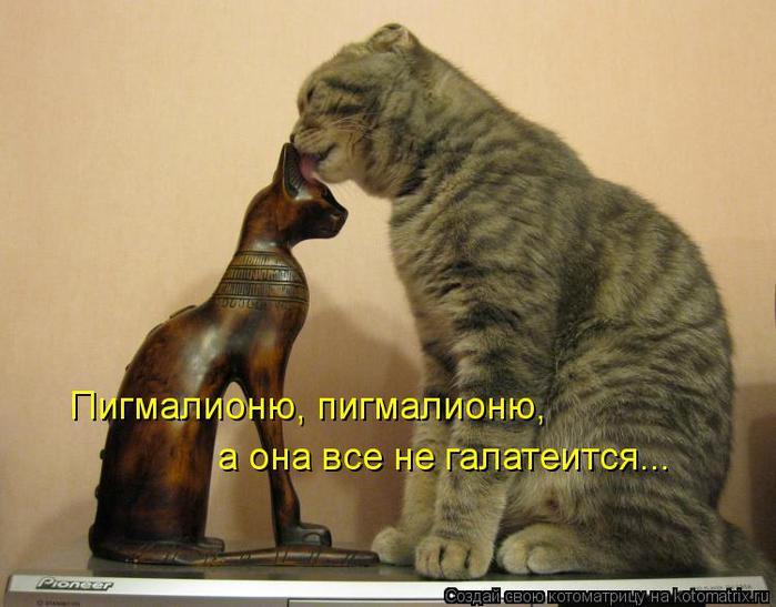 kotomatritsa_q (700x547, 51Kb)