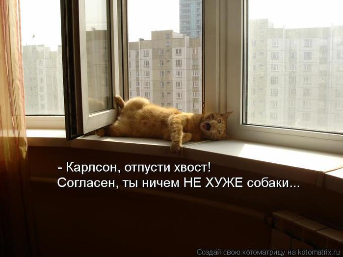 kotomatritsa_Rw (700x524, 41Kb)