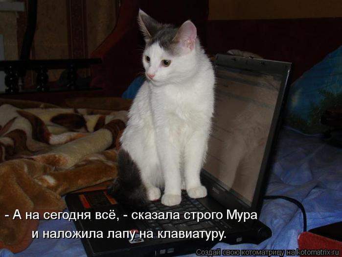 kotomatritsa_T (700x524, 41Kb)