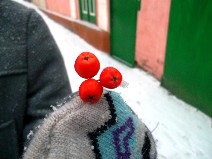 4 белый-оранжевый,макро фото,зимний Новочеркасск (700x525, 388Kb)