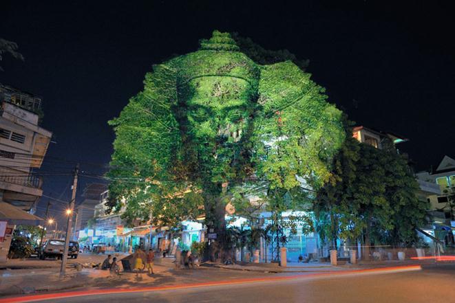 Клеман Бриен. 3D-изображения на деревьях