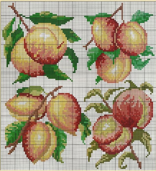 Вышивка крестом абрикос схемы 31