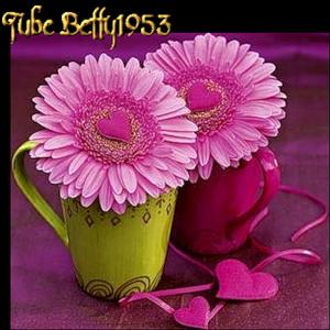 Чай-Соня (300x300, 185Kb)