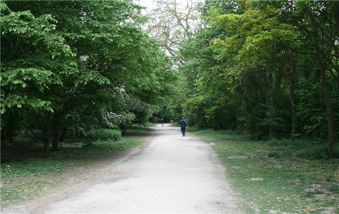 Bois de Boulogne (700x441, 101Kb)